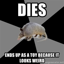 English Major Armadillo - dies ends up as a toy because it looks weird
