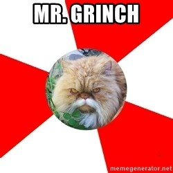 Diabetic Cat - Mr. Grinch