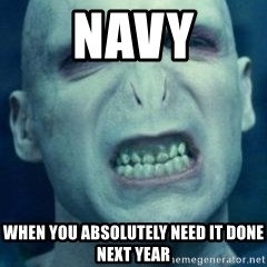 Angry Voldemort - navy when you absolutely need it done next year