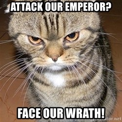 angry cat 2 - attack our emperor? face our wrath!
