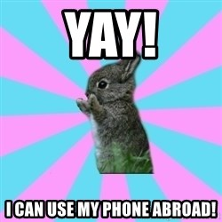 yAy FoR LifE BunNy - Yay! I can use my phone abroad!