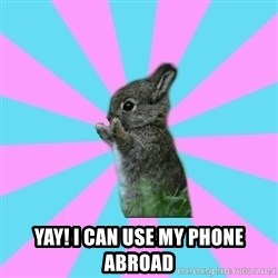 yAy FoR LifE BunNy -  Yay! I can use my phone abroad