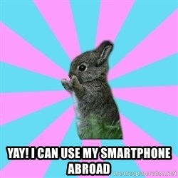 yAy FoR LifE BunNy -  Yay! I can use my smartphone abroad