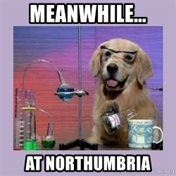 Dog Scientist - Meanwhile... at Northumbria