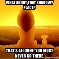 The Lion King - What about that shadowy place? That's Ali Oune. You must never go there.
