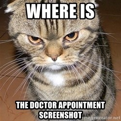 angry cat 2 - Where is the doctor appointment screenshot