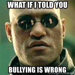 what if i told you matri - What if i told you bullying is wrong