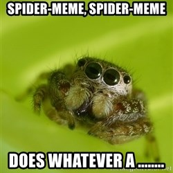 The Spider Bro - Spider-meme, Spider-meme Does whatever a ........