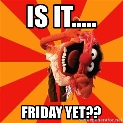 Animal Muppet - is it..... friday yet??