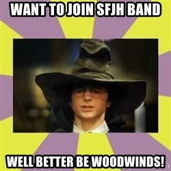 Harry Potter Sorting Hat - Want to join sfjh band well better be woodwinds!