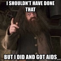 Hagrid - I shouldn't have done that but i did and got aids