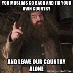 Hagrid - you muslims go back and fix your own country and leave our country alone