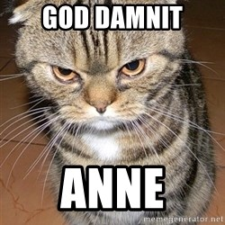 angry cat 2 - God damnit anne