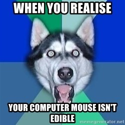 Spoiler Dog - when you realise  your computer mouse isn't edible