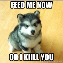 Baby Courage Wolf - FEED ME NOW  OR I KIILL YOU