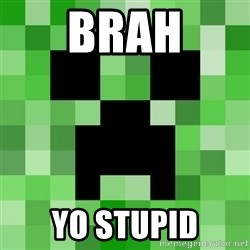 Minecraft Creeper Meme - brah yo stupid