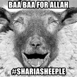 Laughing Sheep - Baa Baa for Allah #ShariaSheeple