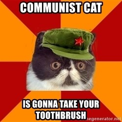 Communist Cat - Communist cat Is gonna take your toothbrush