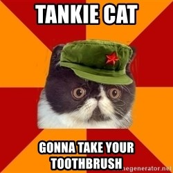Communist Cat - Tankie Cat Gonna take your toothbrush