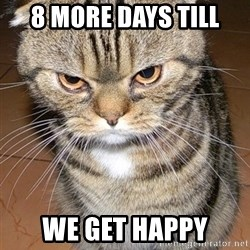 angry cat 2 - 8 more days till we get happy