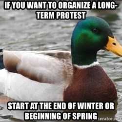 Actual Advice Mallard 1 - If you want to organize a long-term Protest Start at the end of winter or beginning of spring