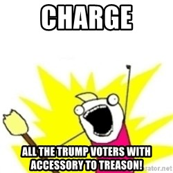 x all the y - charge all the trump voters with accessory to treason!