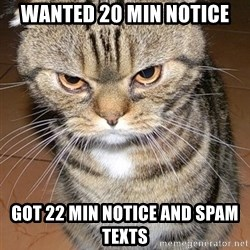 angry cat 2 - Wanted 20 min notice Got 22 min notice and spam texts