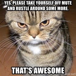 angry cat 2 - Yes, please take yourself off mute and rustle around some more. That's awesome