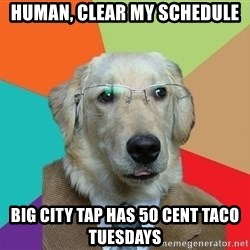 Business Dog - Human, clear my schedule Big City Tap has 50 cent taco tuesdays
