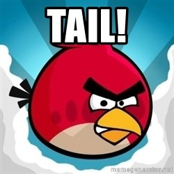 Angry Bird - Tail!
