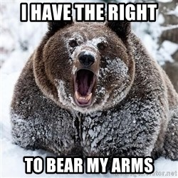 Clean Cocaine Bear - I HAVE The right  TO BEAR MY ARMS