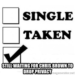 single taken checkbox -  Still waiting for chris brown to drop privacy