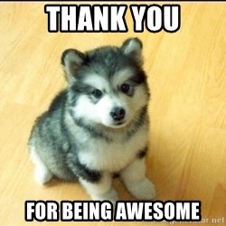 Baby Courage Wolf - thank you for being awesome