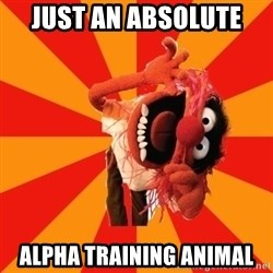 Animal Muppet - JUST AN ABSOLUTE  ALPHA TRAINING ANIMAL