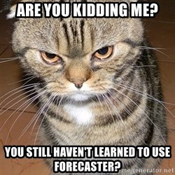 angry cat 2 - ARE YOU KIDDING ME? You STILL haven't learned to use Forecaster?