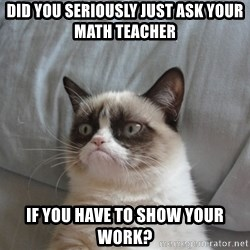 Grumpy cat 5 - did you seriously just ask your math teacher if you have to show your work?