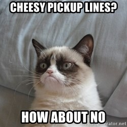 Grumpy cat 5 - cheesy pickup lines? how about no