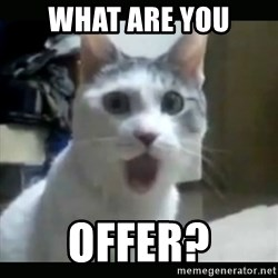 Surprised Cat - What are you offer?
