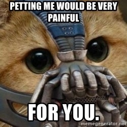 bane cat - petting me would be very painful for you.