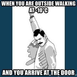 Freddy Mercury - When you are outside walking at -10°C And you arrive at the door