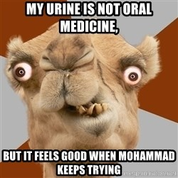Crazy Camel lol - my urine is not oral medicine, but it feels good when mohammad keeps trying