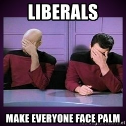 Double Facepalm - liberals make everyone face palm