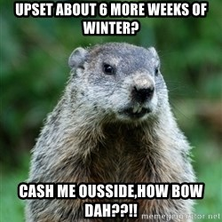 grumpy groundhog - Upset about 6 more weeks of winter? cash me ousside,how bow dah??!!