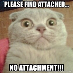 GEEZUS cat - please find attached... no attachment!!!