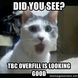 Surprised Cat - DID YOU SEE? TBC OVERFILL IS LOOKING GOOD