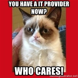 No cat - You have a IT provider now? Who cares!
