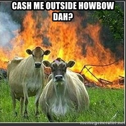 Evil Cows - Cash me outside howbow dah?