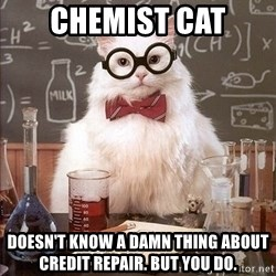 Chemist cat - chemist cat DOESN'T KNOW A DAMN THING ABOUT CREDIT REPAIR. BUT YOU DO.