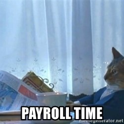 Sophisticated Cat -  PAYROLL TIME