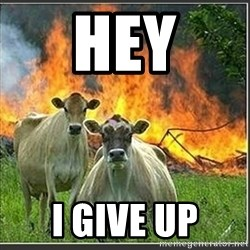Evil Cows - Hey I give up